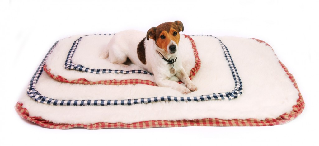 10% Discount Off All Luxury Wool Dog Beds from White Cloud