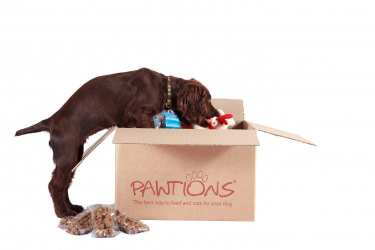 3 Week Trial Of FREE Premium Dog Food from Pawtions.co.uk!