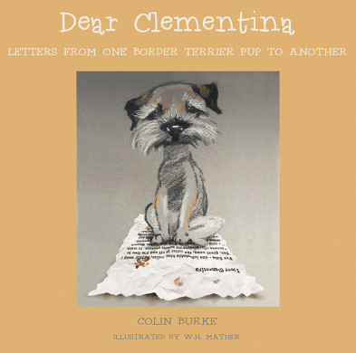 10 Copies of 'Dear Clementina' to Giveaway!