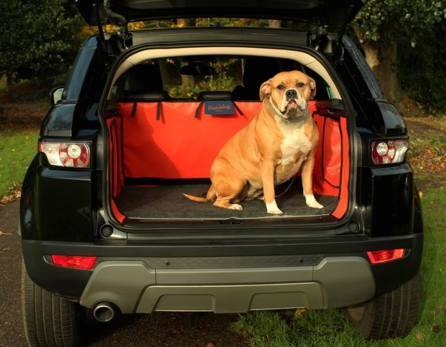 Reader Offer: FREE Hatchbed Mat With Every Boot Liner at Hatchbag.com