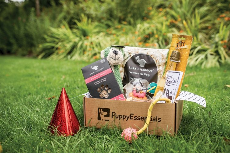 Discount Code: 20% Off at PuppyEssentials.co.uk