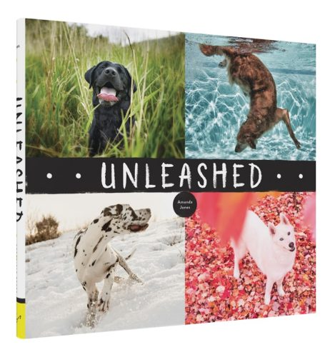 3 Copies of 'Unleashed' to Giveaway!