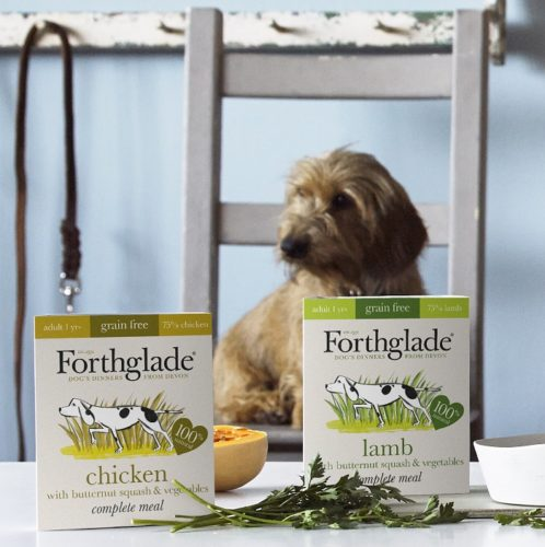 Fancy Winning £150 of Delicious, Natural Pet Food for Your Dog?