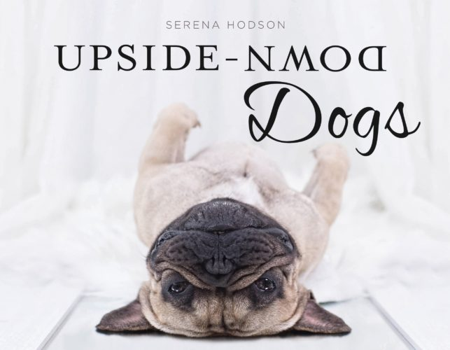 5 Copies of 'Upside-Down Dogs' to Giveaway!