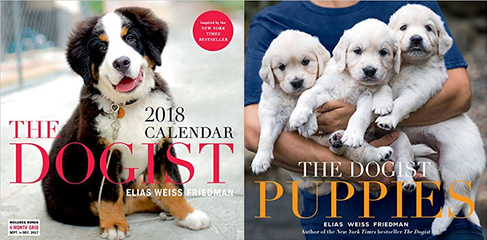 3 Copies of 'The Dogist Puppies' & 'The Dogist 2018 Wall Calendar' to Giveaway!