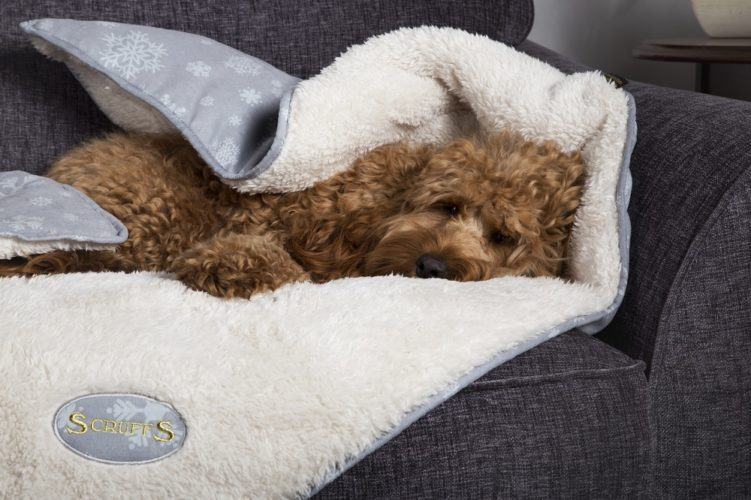 3 Scruffs® Snuggle Winter Wonderland Blankets to Win!