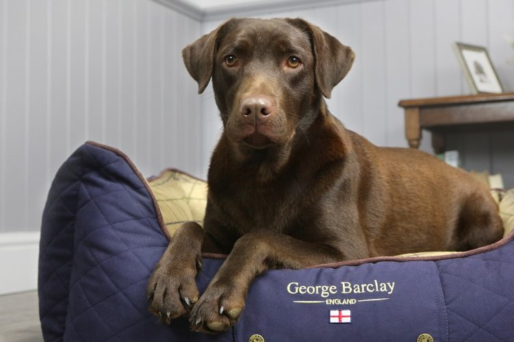 Win a George Barclay Country Box Bed!