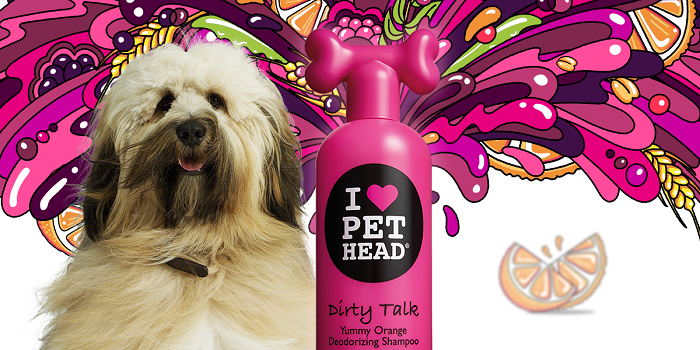 Win a PET HEAD Shampoo & Conditioner Bundle: 3 to Giveaway!