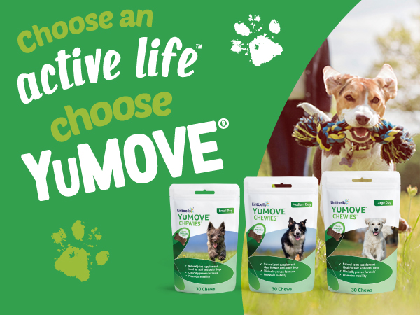 Win a Bundle of YuMOVE ONE-A-DAY Chewies!