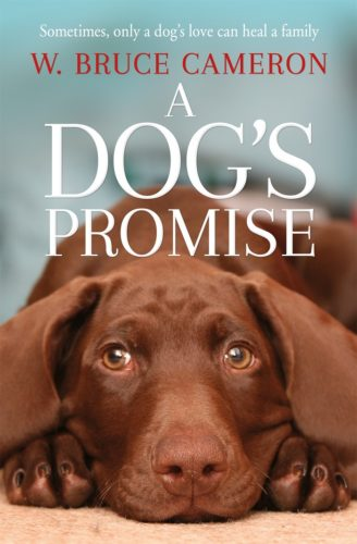 5 Copies of 'A Dog's Promise' to Giveaway!