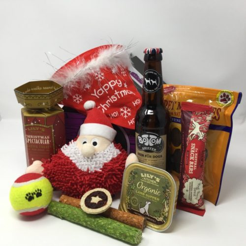 Win a Doggy Xmas Hamper & Cinema Tickets to See 'StarDog and TurboCat'!