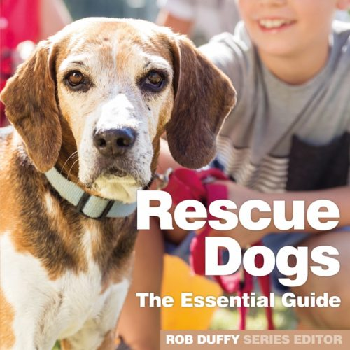 5 Copies of 'Rescue Dogs the Essential Guide' to Giveaway!